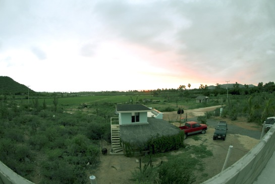 This is the view from on top of the place I am staying before the storm. Notice all the green plants on the right and left side of the photo. Also notice the vine growing on the building in front.