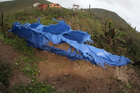 This is the tarp that I put up to cover the windows on my place. It took about an hour to remove this from the barbed wire